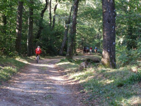 Rigole de la Montagne Noire du Canal du Midi en vélo Canalfriends restaurant camping