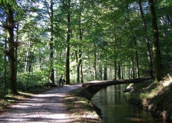 Rigole de la Montagne Noire Canal du Midi Canalfriends