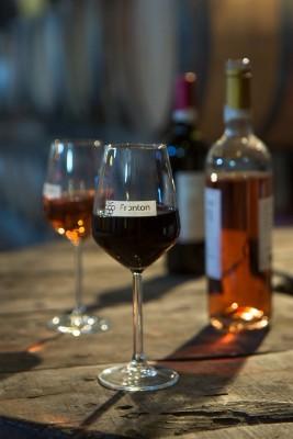 Maison-des-vins-tourisme-Fronton-Canalfriends-pm3