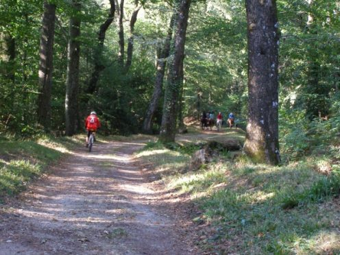 canal du midi, saint ferreol, rigole de la montagne noire, les cammazes, vélo, cycling, canalfriends