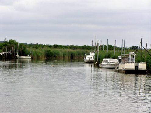 location de canoes; la leyre; canalfriends