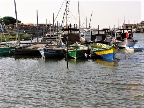 bassin arcachon; bateaux traditionnels; canalfriends