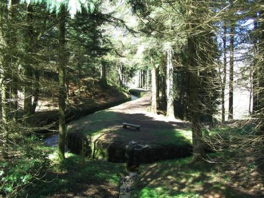 camping-de-la-rigole-canalfriends-balade-2