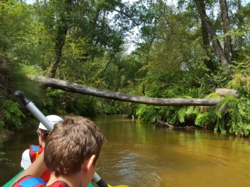 la Leyre, canoe, kayak, bassin arcachon, canalfriends