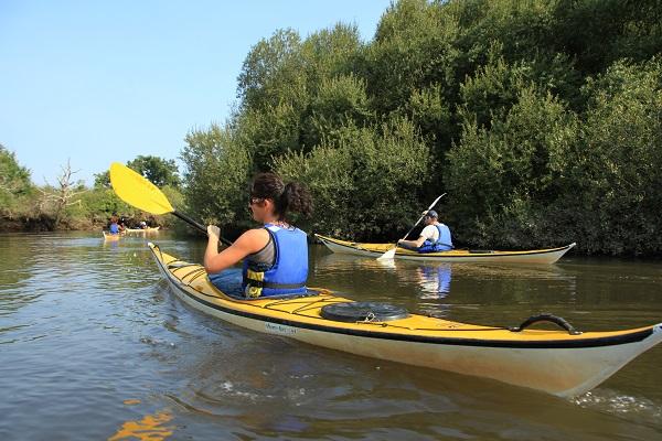 Maison-de-la-nature-kayak-canalfriends