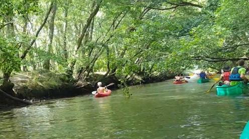 Leyre; Eyre; canoe